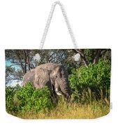 African Bush Elephant Weekender Tote Bag