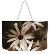 African Daisy Named African Sun Weekender Tote Bag