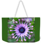 African Daisy - Square Format Weekender Tote Bag