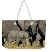 African Elephant Calf With The Herd Weekender Tote Bag