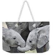 African Elephant Calves Loxodonta Weekender Tote Bag