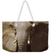 African Elephant Close Up Amboseli Weekender Tote Bag