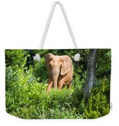 African Elephant Coming Through Trees Weekender Tote Bag