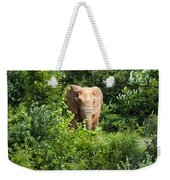 African Elephant Eating In The Shrubs Weekender Tote Bag