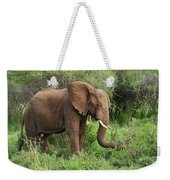 African Elephant Grazing Serengeti Weekender Tote Bag