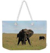 African Elephant Masai Mara Kenya Weekender Tote Bag