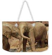 African Elephant Orphans Playing In Mud Weekender Tote Bag