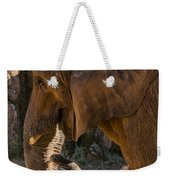 African Elephant Profile Weekender Tote Bag