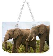 African Elephants Weekender Tote Bag