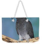 African Gray Parrot Weekender Tote Bag