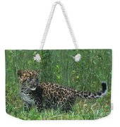 African Leopard Cub In Tall Grass Endangered Species Weekender Tote Bag