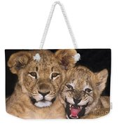 African Lion Cubs One Aint Happy Wldlife Rescue Weekender Tote Bag