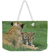 African Lion Cubs Study The Photographer Tanzania Weekender Tote Bag