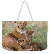 African Lioness And Young Cubs Weekender Tote Bag
