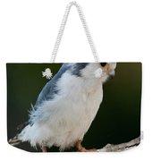 African Pygmy Falcon Weekender Tote Bag