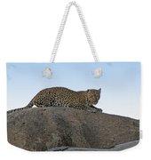 African Safari Leopard 1 Weekender Tote Bag