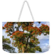 African Tulip At Liliuokalani Park Weekender Tote Bag