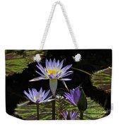 African Waterlily Dazzle -- Plus Dragonfly Weekender Tote Bag