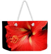 Georgia Red Hibiscus After A Rain Greensboro Georgia Art Weekender Tote Bag