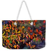 After The Autumn Rain 1 Weekender Tote Bag