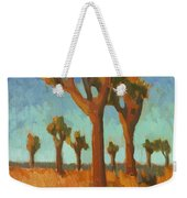 Afternoon Light At Joshua Tree Weekender Tote Bag