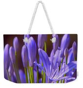 Agapanthus - Lily Of The Nile - African Lily Weekender Tote Bag