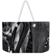Agave Black And White Dsc08571 Weekender Tote Bag