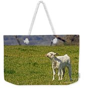 Ahhhh Spring Is Here Weekender Tote Bag
