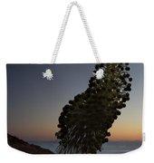 Ahinahina - Silversword - Argyroxiphium Sandwicense - Summit Haleakala Maui Hawaii Weekender Tote Bag