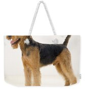 Airedale Terrier Dog Weekender Tote Bag