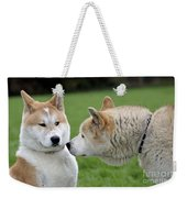 Akita Inu Dogs, Old And Young Weekender Tote Bag