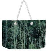 Alabama Autumn Marsh Weekender Tote Bag