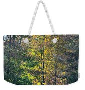 Alabama Forest In Autumn 2012 Weekender Tote Bag