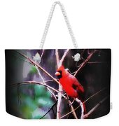 Alabama Rain - Cardinal Weekender Tote Bag
