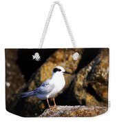 Alabama Tern Weekender Tote Bag