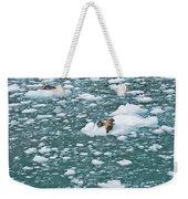 Alaska Seals Weekender Tote Bag