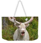 Albino Reindeer Weekender Tote Bag