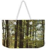 Aldridge Lake Trail Weekender Tote Bag
