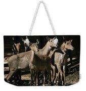Alert Antelopes Weekender Tote Bag