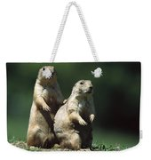 Alert Black-tailed Prairie Dogs Weekender Tote Bag