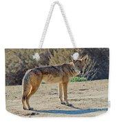 Alert Coyote Weekender Tote Bag