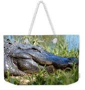 Alligator Smiling Weekender Tote Bag