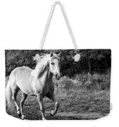 All Charm Weekender Tote Bag