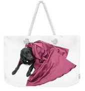 All Dressed Up And No Where To Go Weekender Tote Bag