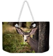 All Ears - Mule Deer Fawn - Casper Mountain - Casper Wyoming Weekender Tote Bag