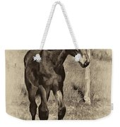 All Legs Sepia Weekender Tote Bag