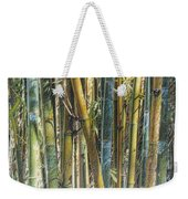 All The Colors Of The Bamboo Rainbow Weekender Tote Bag