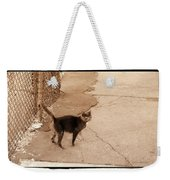 Alley Cat Weekender Tote Bag