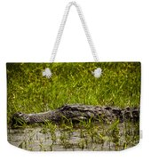 Alligator Amoungst Us Weekender Tote Bag
