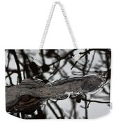 Alligator Eye Weekender Tote Bag